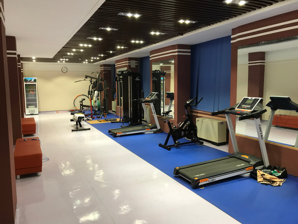 Kim Il Sung University Foreign Student Dormitory Gym 01