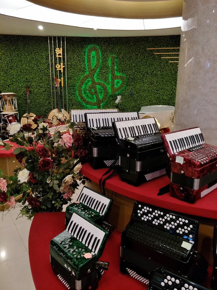 Ryongnamsan Musical Instrument Shop Accordions 01