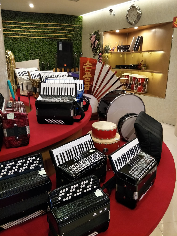 Ryongnamsan Musical Instrument Shop Accordions 02